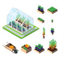 Greenhouse isometric set vector