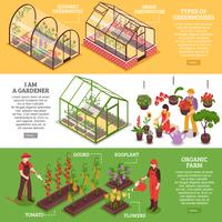 Greenhouse Banner Set vector