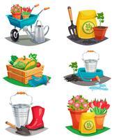 Satz lokalisierte Garten-Design-Zusammensetzungen