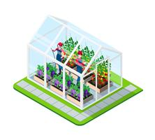 Greenhouse Isometric Concept vector