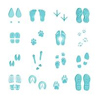Ice Blue Footprints Set On White