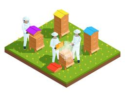 Beekeeping apiary isometric composition