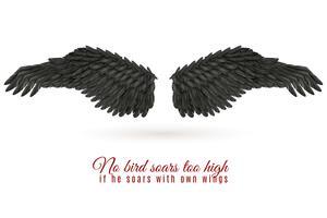 Fondo de ala de pájaro oscuro