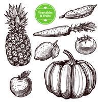 Gemüse und Früchte eingestellt