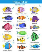 Set di icone di pesci tropicali