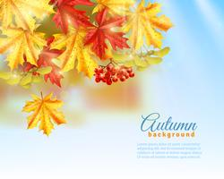 Flat Autumn Background vector
