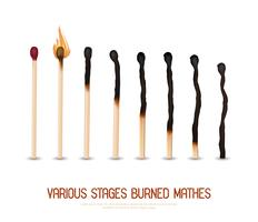 Burned Matches Set vector