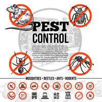 Pest Control Infographics vector