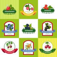 Set di icone piane di etichette fresche bacche