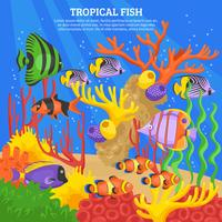 Tropical Fish Sea Background