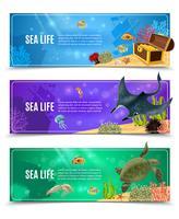 Conjunto de banners de vida marina