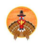 thanksgiving turkey bird vector illustration