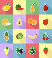 fruits plats set d'icônes avec l'illustration vectorielle ombre