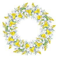 Spring bright wreath with daffodils and forget-me-nots. Vector illustration.