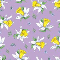 Elegance Seamless pattern with flowers narcissus on spring background vector