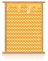 honey comb in the frame vector illustration