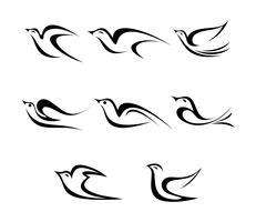 Ícones do vetor do pássaro