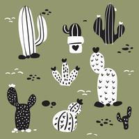 cactus vector collection design