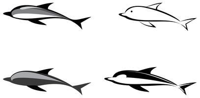 Delfin - vektor illustration