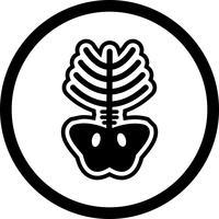 xray ikon design