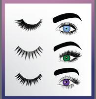 Falsche Wimpernstile Vector Pack