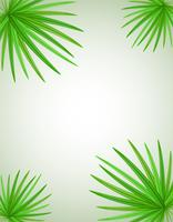 palm branch vector illustration
