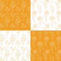 orange and white hand drawn botanical patterns