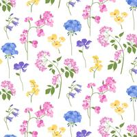 botanical pattern on white background vector