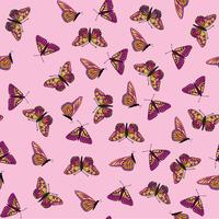 Butterfly seamless pattern. Summer holiday wildlife background.