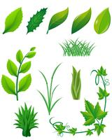 icon set of green leaves and plants for design