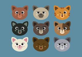 Set de Caras de Gato