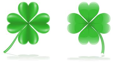 lucky clover vector illustration