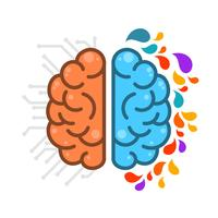 Flat Simple Human Brain HemisPheres  vector