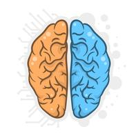 Handdragen mänsklig hjärnhalvfrisillustration