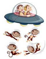 A set of space monkey on white background