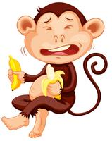 Monkey holding banana crying