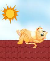 Lazy cat on the roof