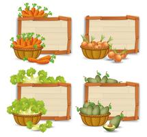 Set of organic vegetable on wooden board