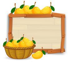 Mango on empty banner
