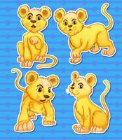 Lion set