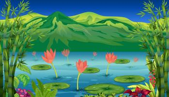 Los lirios de agua y flores en el lago.