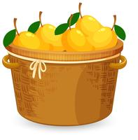 A basket of mango