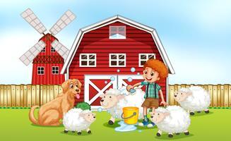 Jongen die schapenbad in het landbouwbedrijf geeft