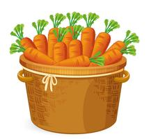 Carrot in in basket weaving