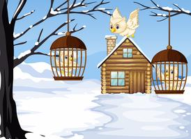 Winter scene with white owls in bird cages