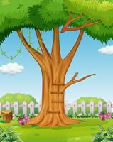 Tree in the garden vector
