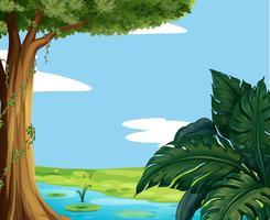Scen med damm och stort träd