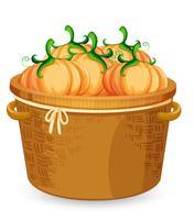 A basket of pumpkin