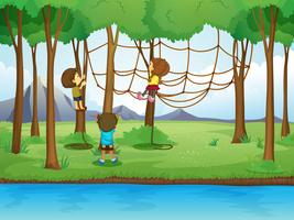 Children climbing rope in the forest