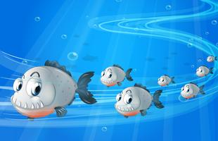 A school of gray fishes vector